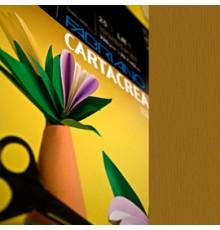Blister 10fg cartoncino 35x50cm 220gr arancio Cartacrea Fabriano